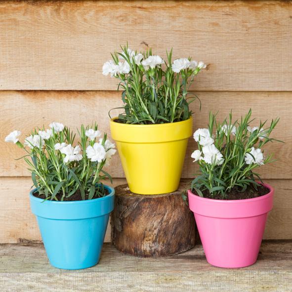 4c - Flower Pots after SQ v2