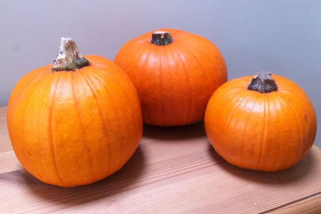 pumpkins-before
