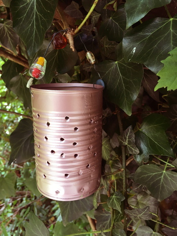 Rose Gold tin can lantern