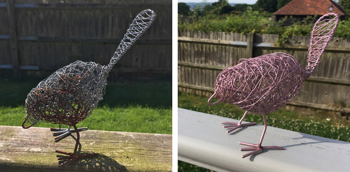 bird before and after
