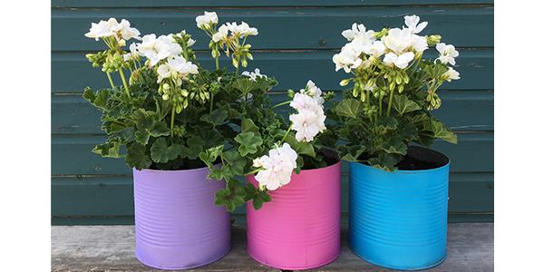 PlastiKote Garden Accessories 41 - Garden spray paint in Lavender, Azalea and Sea View